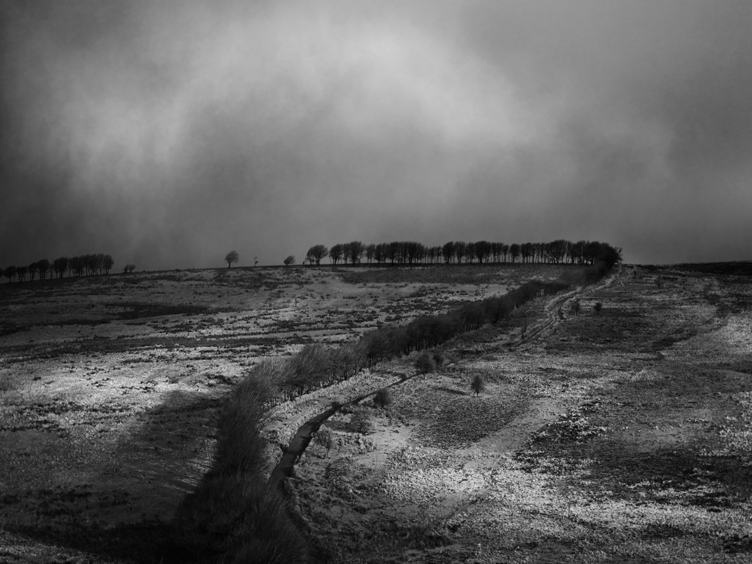 Jon Wyatt Photography - Moorland at Lucott Cross, Exmoor
