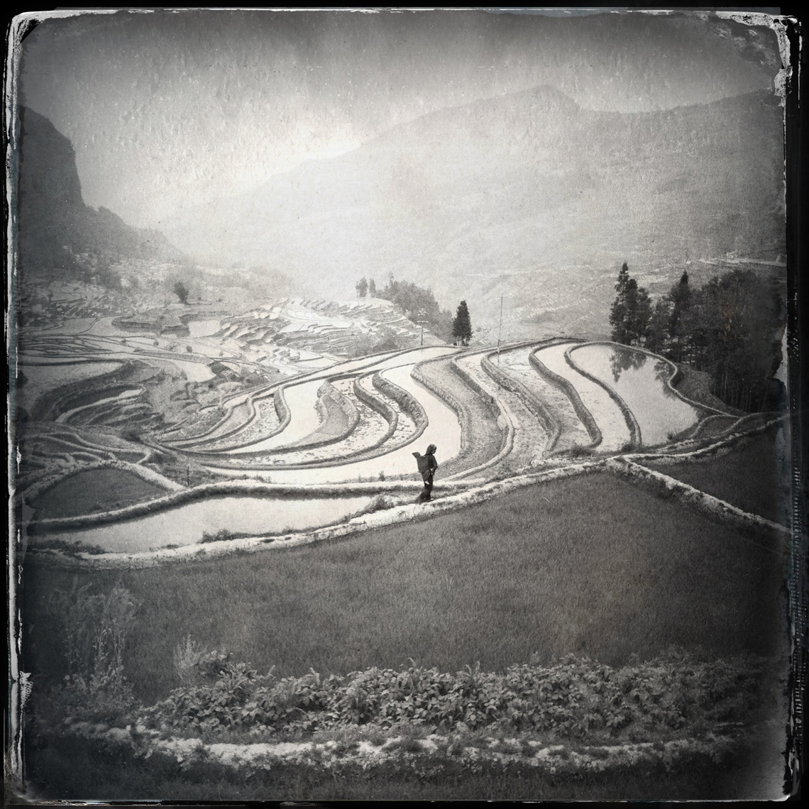 Jon Wyatt Photography - Rice paddies in Yuanyang, Yunnan, China. Hipstamatic