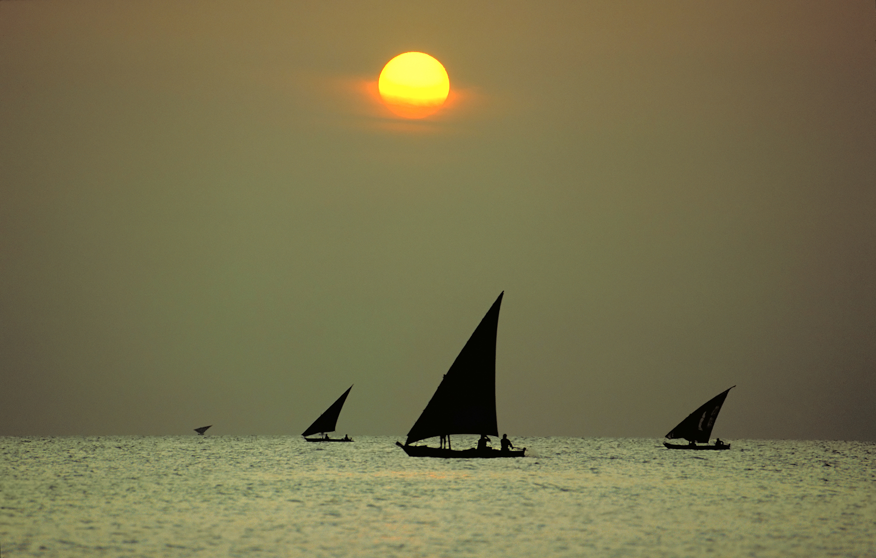 Jon Wyatt Photography - Dhows, Zanzibar